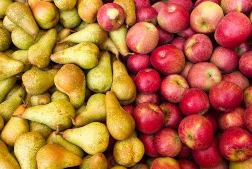 Eating seasonal: Fall Fruit Guide